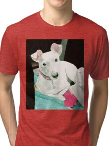 Sully the Jack Russell Terrier Tri-blend T-Shirt