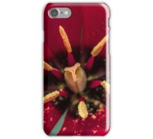 Macro Red Tulip Flower iPhone Case/Skin