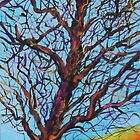 The Looking Tree  SOLD by Deborah Glasgow