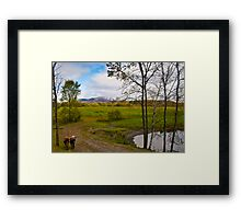 Two Cows in Fall Framed Print