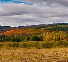 Colebrook Panorama by awgilmore