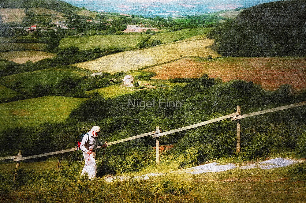 It's Lonely At The Top by Nigel Finn