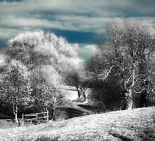 Jack Frost Nipping At Your Toes by Nigel Finn