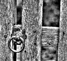 Gate Latch by Kelvin Hughes