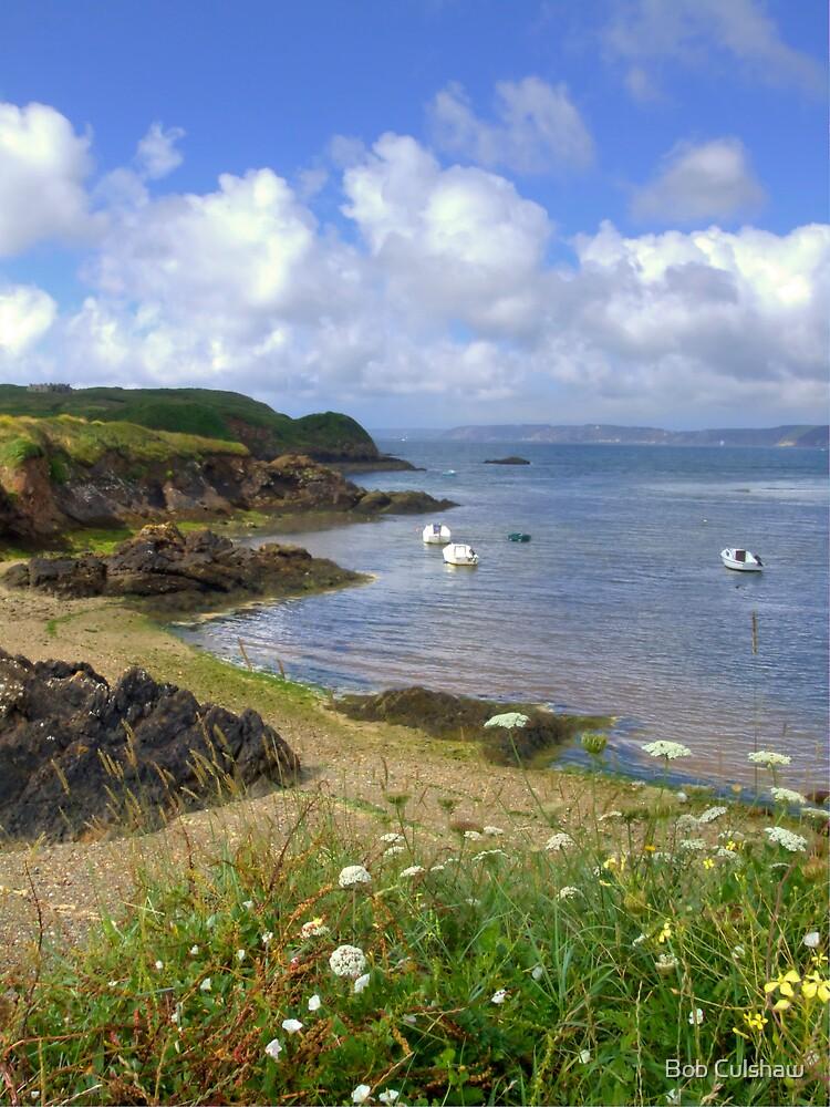 L'Aber, Brittany, France by Bob Culshaw