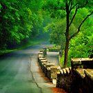 Lehigh Parkway.... by DaveHrusecky