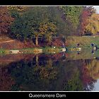 Queensmere Dam Clifton, Manchester by PeterBez