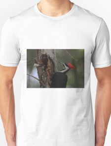 Did I do that ? Unisex T-Shirt