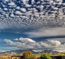 Cotton Ball Sky by David F Putnam