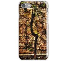 Urban Scene Fine Art Print iPhone Case/Skin