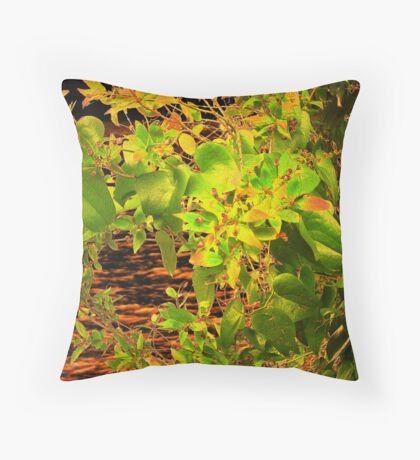GLOW in the Bush Throw Pillow