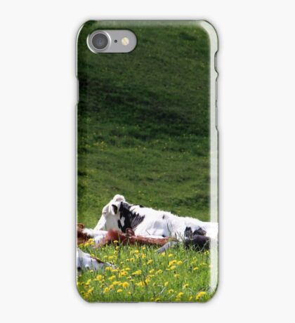 28.5.2015: Cows on Pasture iPhone Case/Skin