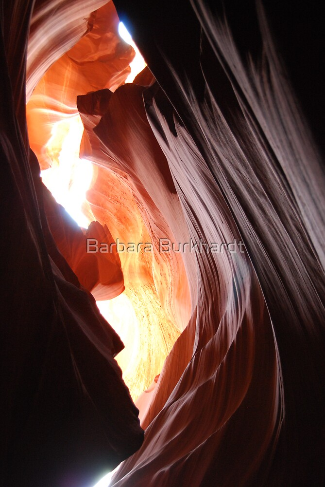 Antelope Canyon - Skylight by Barbara Burkhardt