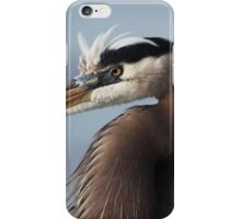 Great Blue iPhone Case/Skin