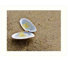Ocean Butterfly....Neptune Beach...outside of Yachats, Ore. Art Print