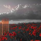 We must never forget - In Honour of Armistice Day by jillijude1