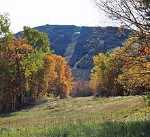 Sugarloaf Mountain by Rebecca Brann