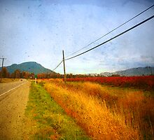 Past the Blueberry Fields on Highway 9 by Tara  Turner