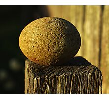 things of stone and wood Photographic Print