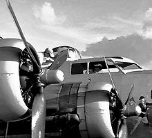 Flight check by David Lee Thompson