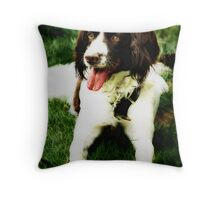 Distinguished Throw Pillow