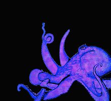 Another Octopus by Nicoletta37
