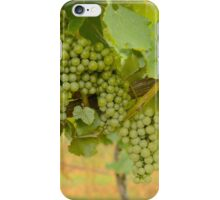 Wine Season iPhone Case/Skin