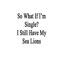 So What If I'm Single? I Still Have My Sea Lions  by supernova23