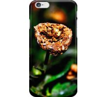 Autumn Whispers Fine Art Print iPhone Case/Skin