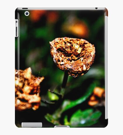 Autumn Whispers Fine Art Print iPad Case/Skin