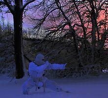 Snow Ninja by stealthcat82