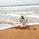 frosty at the beach by Anita Waters