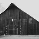Hey old barn by Mark Anthony Carter