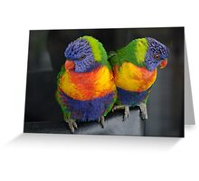 Lorikeets Greeting Card
