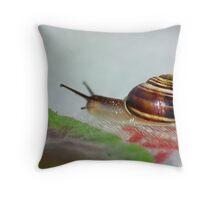 Slow Snail Throw Pillow