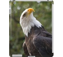Quizzical Eagle iPad Case/Skin