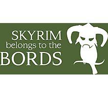Skyrim belongs to the Bords Photographic Print