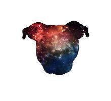 Galaxy Pittie by Savannah Terrell