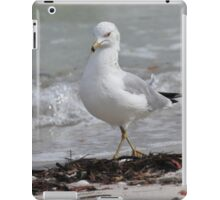 walkin the beach iPad Case/Skin