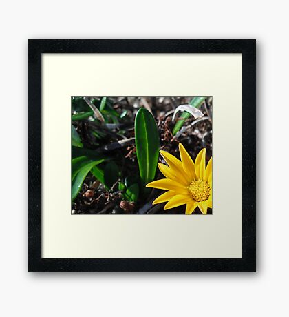 Off Centre Framed Print