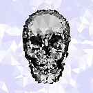 Shattered Skull by tastypaper