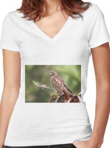 Red-shouldered Hawk  Women's Fitted V-Neck T-Shirt