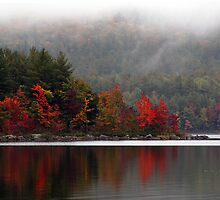 September Fog by Joanne  Bradley