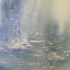 Stormy Waters by Glenn Marshall