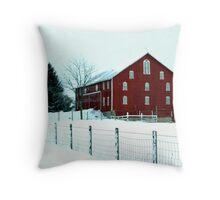 012909-7 Throw Pillow