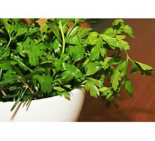 parsley_pot Photographic Print