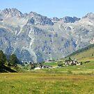 In Fextal Valley Switzerland by Monica Engeler