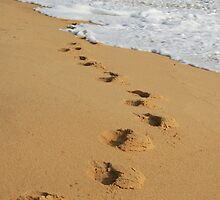 footprints in the sand by momarch