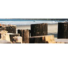 rustic wood border on the beach Photographic Print