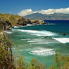 coast of Maui by fauselr